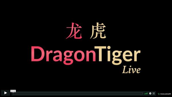 instruction dragon tiger